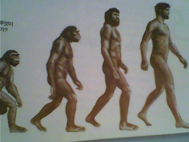 진화론에 대하여 묻습니다